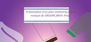 Stratégie marketing pmp