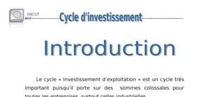 Audit cycle d invessetissement