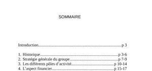 Rapprot de stage cas: danone maroc