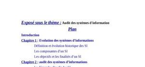 L'audit des systemes d'information