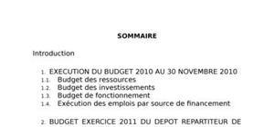 Exemple de budget d'une entreprise