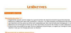 Les enzymes, principes, cinétiques et régulation