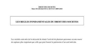 Droit des sociétés_ cours pdf