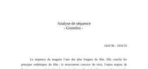 Analyse de séquence gremlins