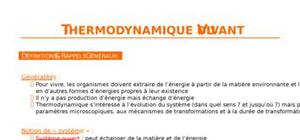 Thermodynamique du vivant