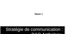 Dolce et gabbana dossier de communication