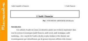 L'audit financier dans l'entreprise