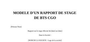 Rapport de stage bts cgo