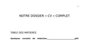 Document :  modèle CV