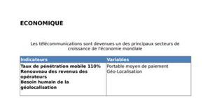 Télécommunication économique