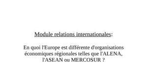 En quoi l'europe est-elle différente des autres organisations économiques régionales