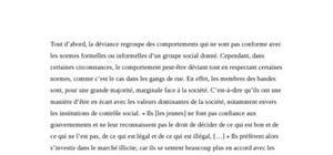 Sociologie, analyse sur les gangs de rue