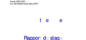 Rapport de stage msg software