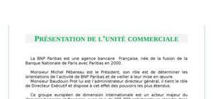 Action et conduite de la relation commerciale chez bnp paribas