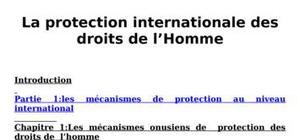 La protection internationale des droits de l'homme