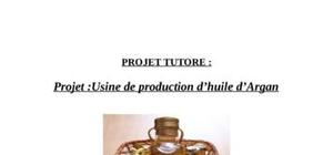Business plan  l'huile d'argan