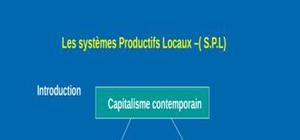 Systeme productif locaux