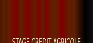Rapport de stage de crédit agricole