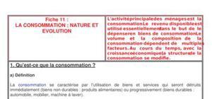 La consommation : nature et evolution