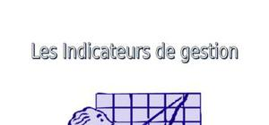 Les indicateurs de gestion