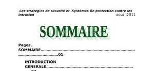 Architecture et systeme de detection contre les intrusions