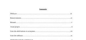 Rapport de stage: le controle interne de la télé compensation