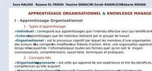 Apprentissage organisationnel