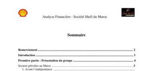 Analyse financière shell