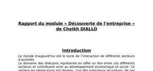 Rapport de module d'insertion professionnelle