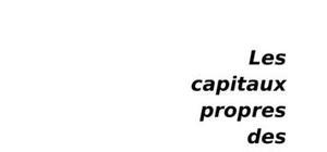 Les capitaux propres des sociétés