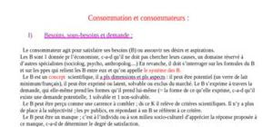 Consommation et consommateurs