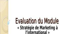 Stratégie de marketing à l'intrnational - cas interseed