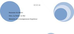 Fonctionnement d'une structure marketing et commerciale au sein d'une entreprise parapublique, cas d'étude : le port autonome de douala