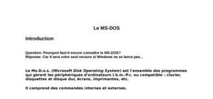 Le ms dos (microsoft disk operating system)