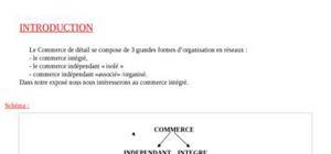 Presentation du commerce intégré
