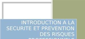 Introduction a la securite et prevention des risques professionnels
