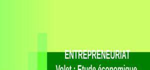 Entrepreneuriat , volet économique