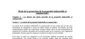 Droit de la protection de la propriété industrielle et commercial