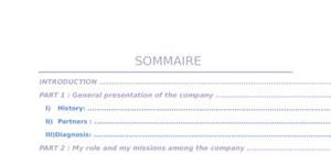 Rapport de stage international business