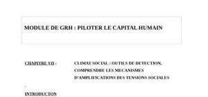 Climat social : outils de detection, comprendre les mecanismes d'amplifications des tensions sociales