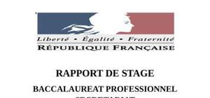 Raport de stage tribunal bac pro secretariat
