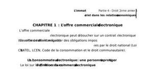 L'offre commerciale électronique