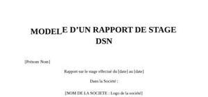 Rapport de Stage DSN