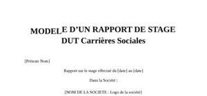 Rapport de Stage DUT Carrières Sociales
