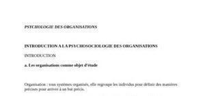 Psychologie des organisations