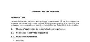 Contribution des patentes