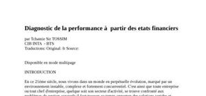 Diagnostic de la performance à  partir des etats financiers
