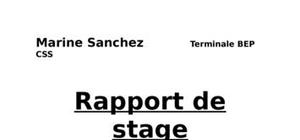 Raport de stage maison de retraite for Stage de cuisine gratuit