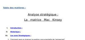 Analyse stratégique : la   matrice   mac   kinsey