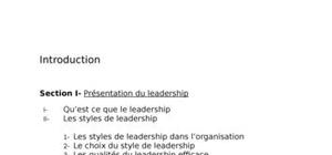 Fonction du leadership